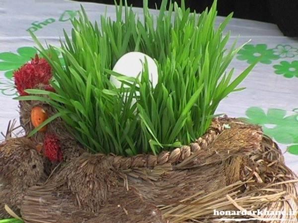 سبز کردن سبزه عید نوروز