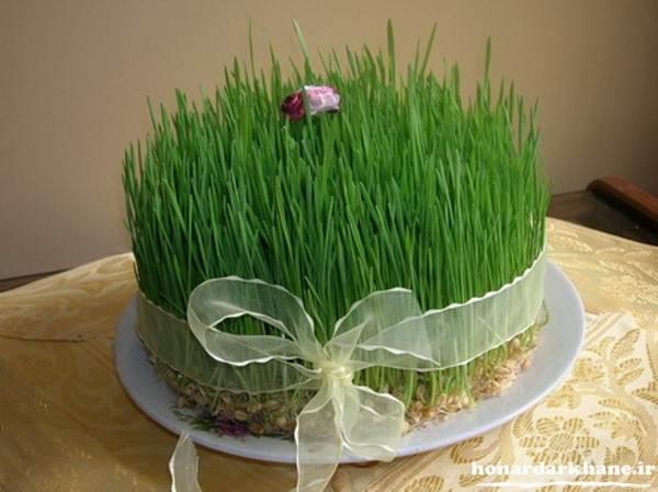 سبزه عید نوروز با گندم