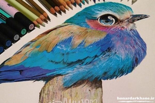 مدل نقاشی زیبا و جالب