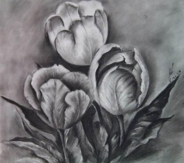 مدل نقاشی سیاه قلم
