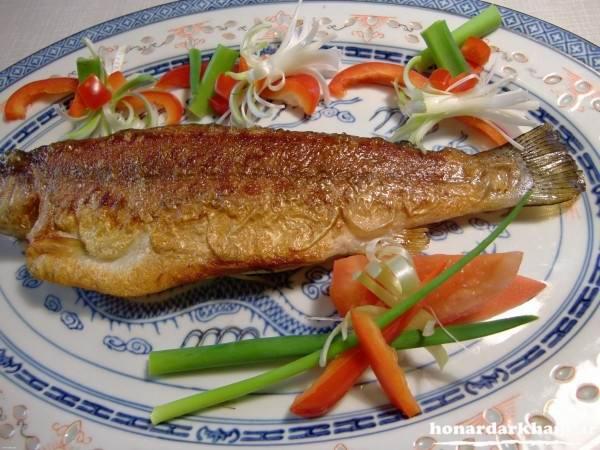 دیزاین ماهی مجلسی