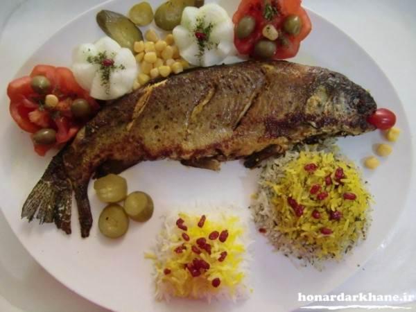 دیزاین ماهی