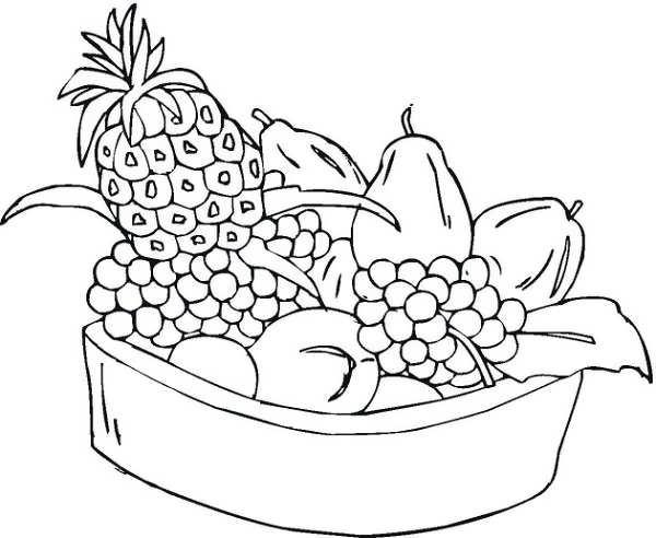 مدل نقاشی میوه های پاییز