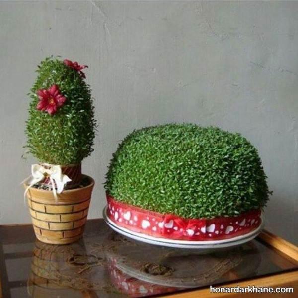 سبزه های عید نوروز