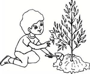 نقاشی درختکاری