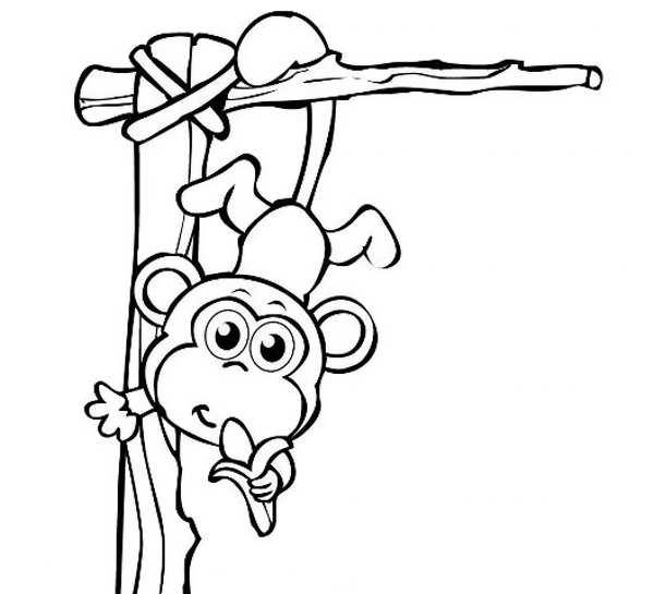 مدل رنگ آمیزی میمون برای بچه ها
