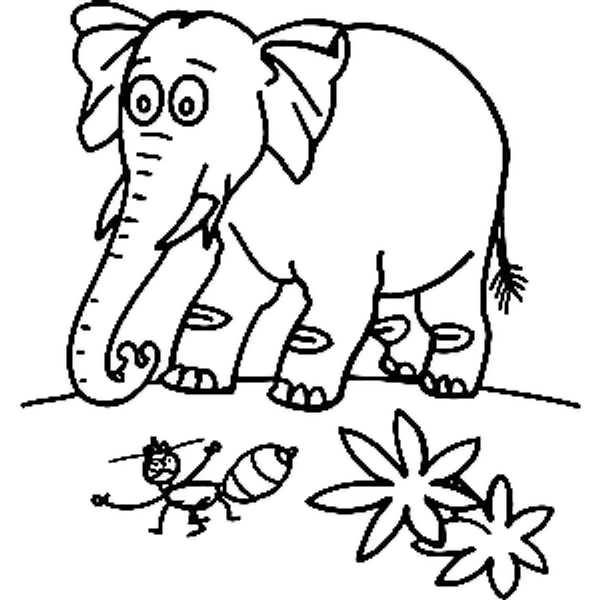 رنگ آمیزی فیل برای کودکان