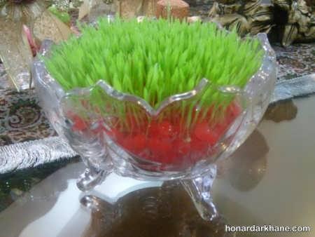 کاشت سبزه با ارزن