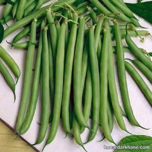 تهیه ترشی لوبیا سبز