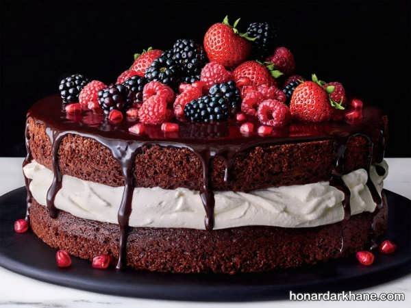 انواع مختلف تزیین کیک با خامه و شکلات