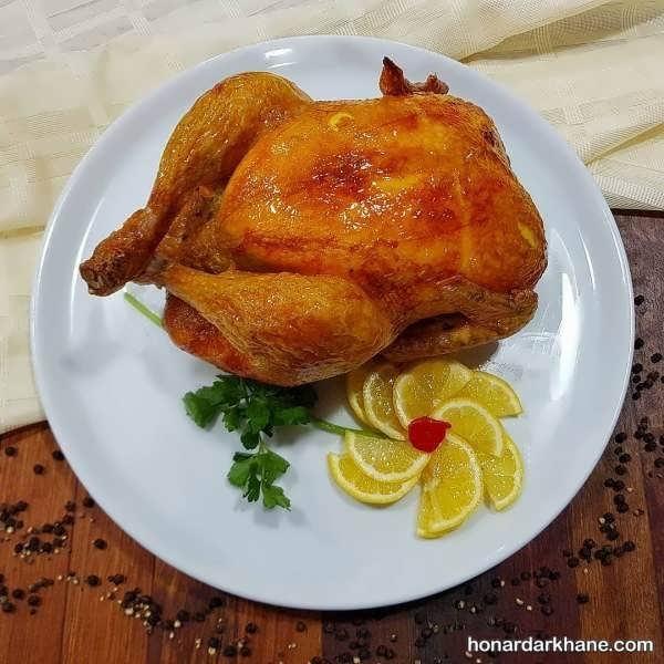 انواع دیزاین جالب و زیبا مرغ با مواد مختلف