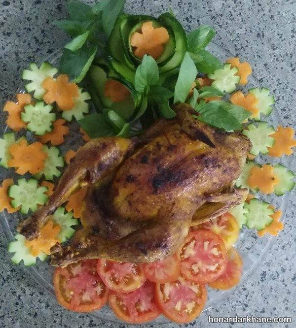 انواع دورچین شیک و جذاب مرغ
