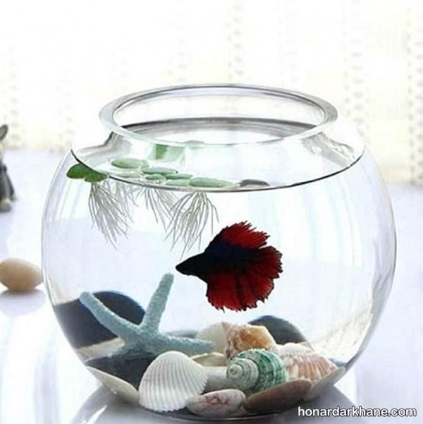 انواع تزیین زیبا و جالب تنگ ماهی هفت سین