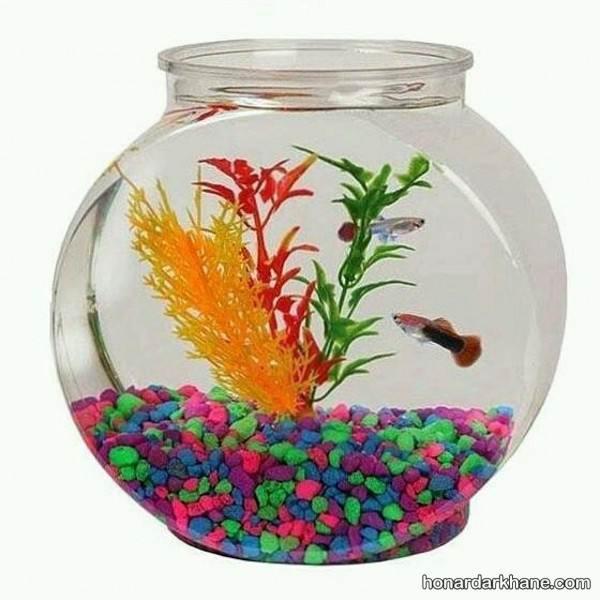 انواع دیزاین جالب تنگ ماهی با وسایل ساده
