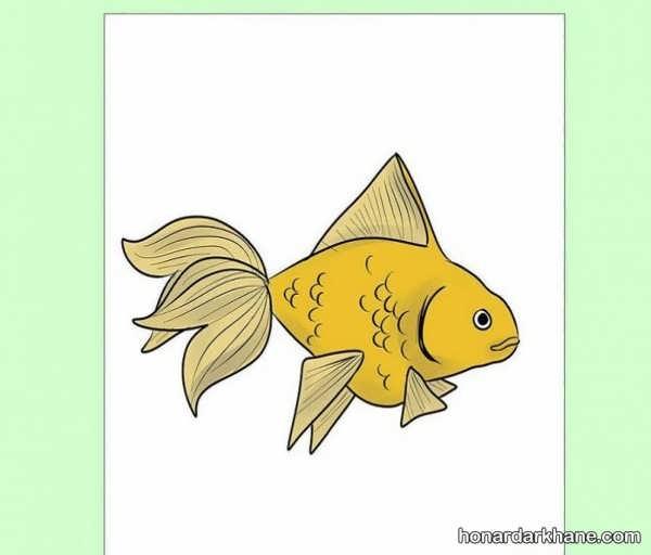 انواع مدل های جالب طراحی ماهی برای کودکان