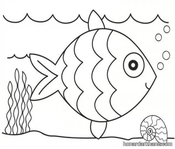 انواع طراحی زیبا و بامزه به شکل ماهی