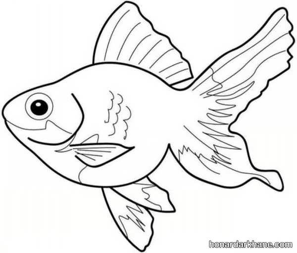 انواع مختلف نقاشی ماهی کودکانه