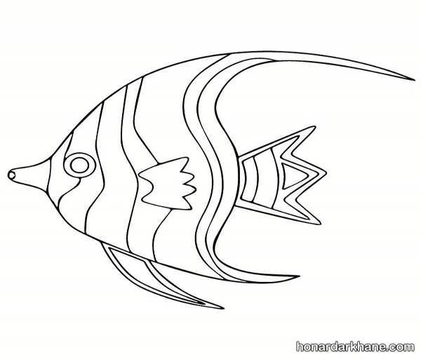 انواع رنگ آمیزی ماهی فانتزی