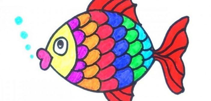 انواع مختلف نقاشی ماهی و رنگ آمیزی آن