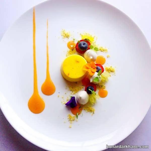 انواع تزیین زیبا ظرف غذا با سس