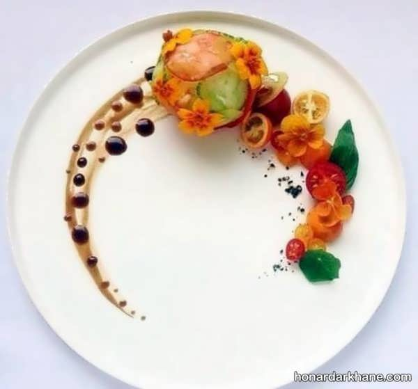 مدل های جذاب و جالب تزیین غذا با سس