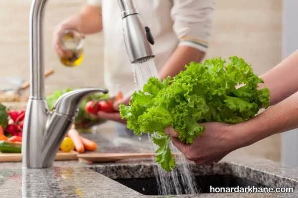 انواع گند زدایی سبزیجات به روش های مختلف