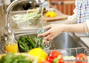 انواع روش های مختلف ضدعفونی سبزیجات