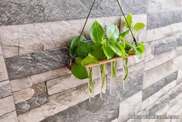 انواع تزیین خاص و خلاقانه گل پتوس