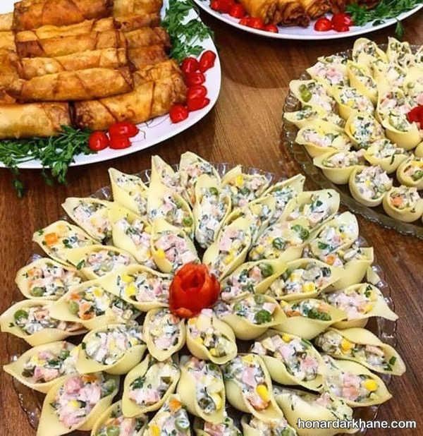 انواع مدل های جالب تزیین غذا